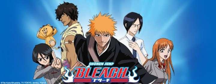 Bleach Anime Series