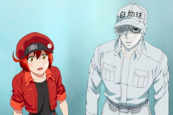 cells at work anime osmosis