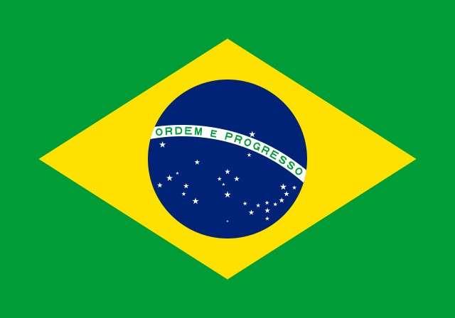 Brazil Flag Logo
