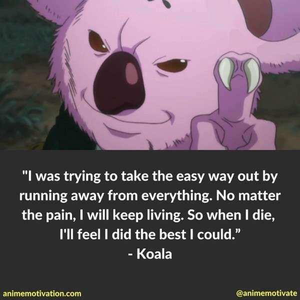 Koala Quotes Hxh