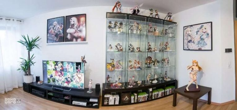Anime Figure Collection Living Room