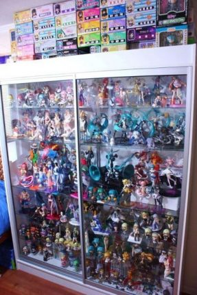 Anime Figure Display Cabinet Crazy