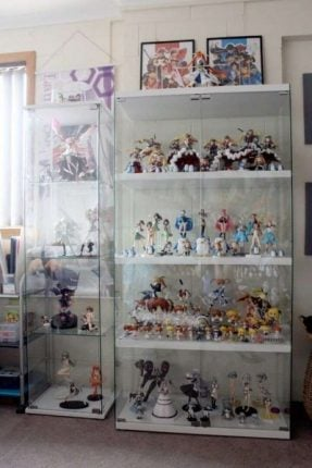 Anime Figures In Cabinet