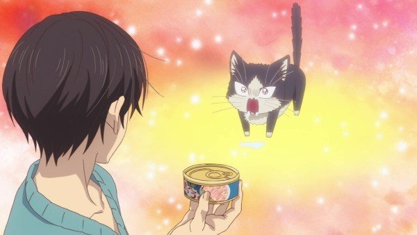 my roommate is a cat anime screenshot