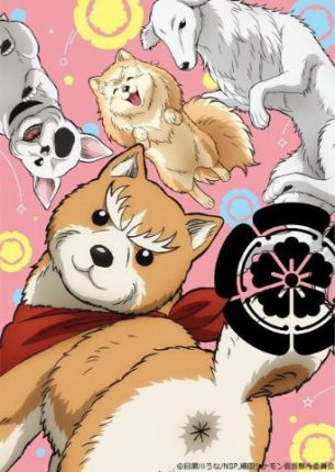 Oda Shinamon Nobunaga ANIME