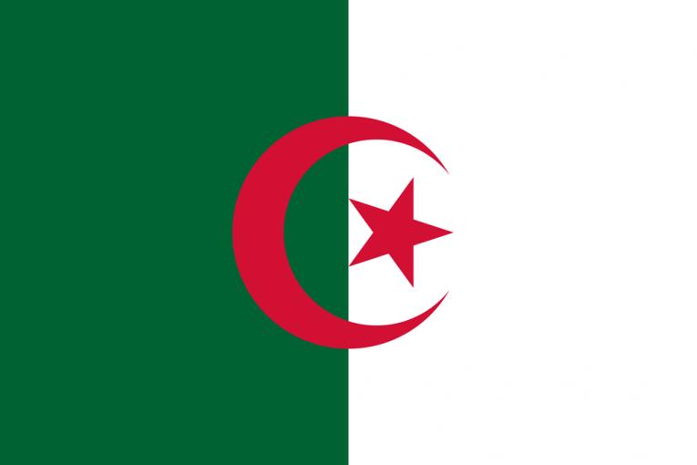 algeria flag medium