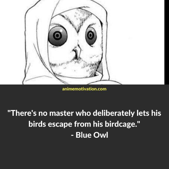 Blue Owl quotes 2