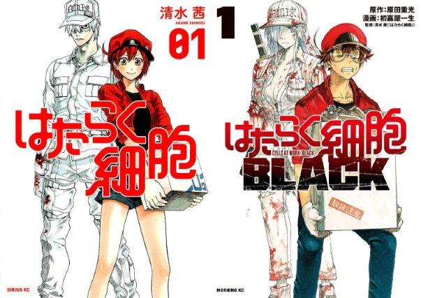 Hataraku Saibou Black 2021