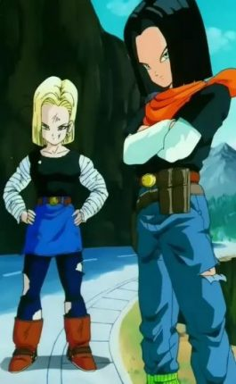 Android 17 and Android 18 From Dragon Ball