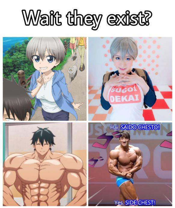 anime body proportions in real life comparison